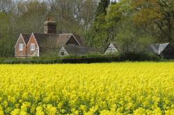 Detached House To Let  Wadhurst East Sussex TN5
