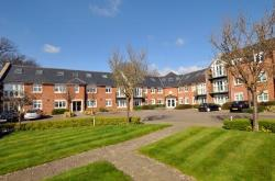 Flat To Let  Chichester West Sussex PO19