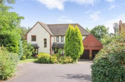 Detached House For Sale  Colyton Devon EX24