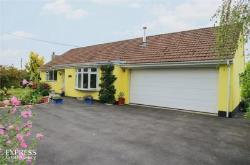 Detached Bungalow For Sale  Winkleigh Devon EX19