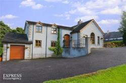 Detached House For Sale  Dromore Down BT25
