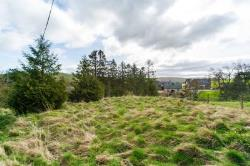 Land For Sale  Hawick Scottish Borders TD9