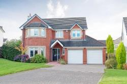 Detached House For Sale  Blantyre Lanarkshire G72