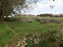 Land For Sale  Lampeter Carmarthenshire SA48