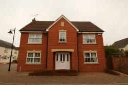 Detached House To Let Cotford St. Luke Taunton Somerset TA4