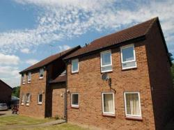 Flat To Let  Hockley Essex SS5