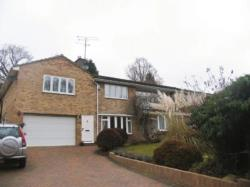 Flat To Let  CAMBERLEY Surrey GU16