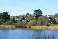 Flat To Let Swanpool Falmouth Cornwall TR11