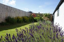 Semi Detached House To Let  Cornwall Cornwall TR1