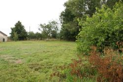 Land For Sale Mutford Beccles Suffolk NR34