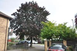 Terraced House To Let Harrow Weald  Middlesex HA3