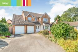 Other For Sale  Ingleby Barwick, Stockton-On-Tees Cleveland TS17