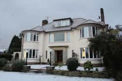 Flat To Let Comber Newtownards Down BT23