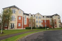 Flat To Let  Lisburn Down BT28